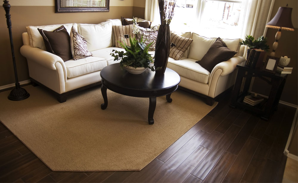 Living Space with Plank Flooring under a Rug